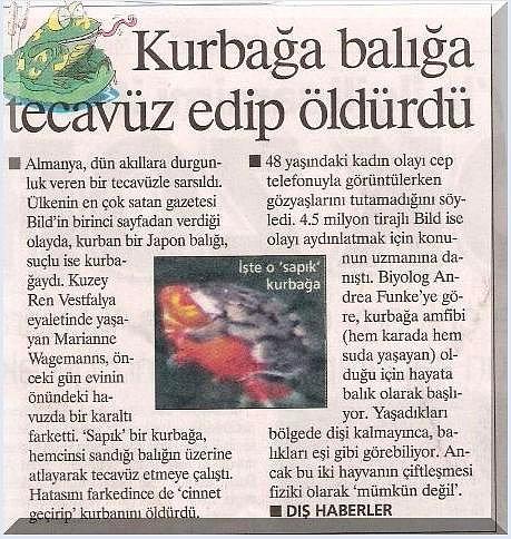 Turkish tubes at Hard Ho Porno
