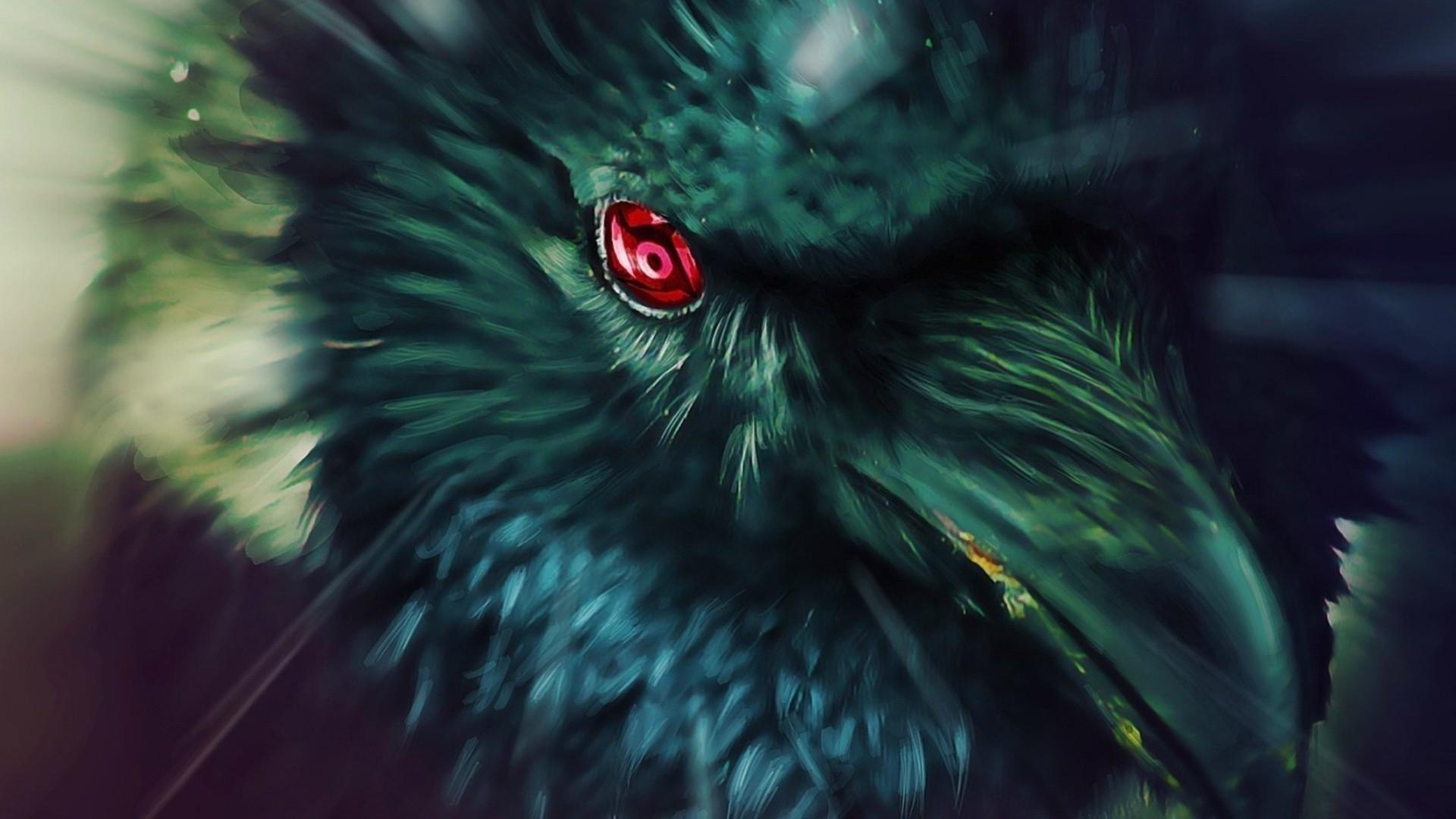 Ürkütücü Karga Deneyi: Kargalar Unutmaz ve Ölümden Ders Çıkarır