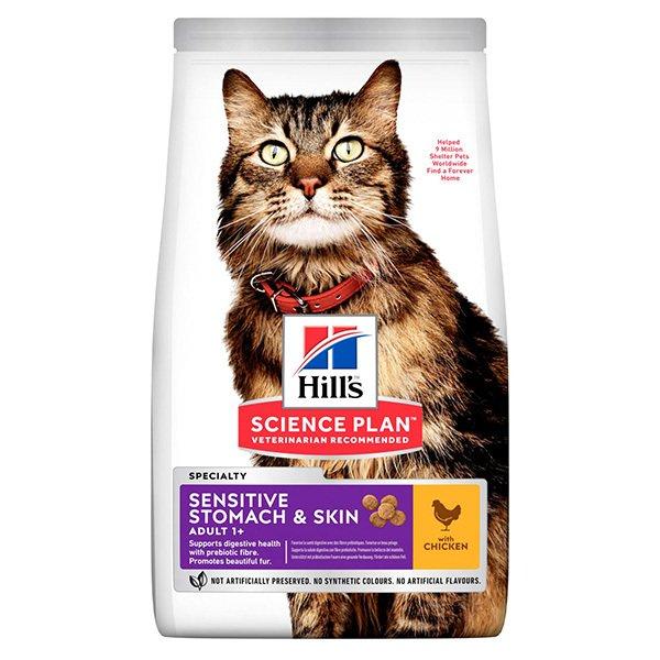 Kedilerin Sağlıklı Beslenmelerini Sağlamak için Hangi Kedi Mamaları Seçilmeli?